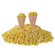 Popcorn_Cone_O_Corn_Gold_Medal_M2067_PS_05132010